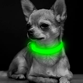 halo lb dog collar