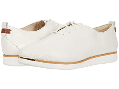 Cole Haan Grand Ambition Lace-Up (Ivory Python Print Leather/British Tan/Ivory) Women