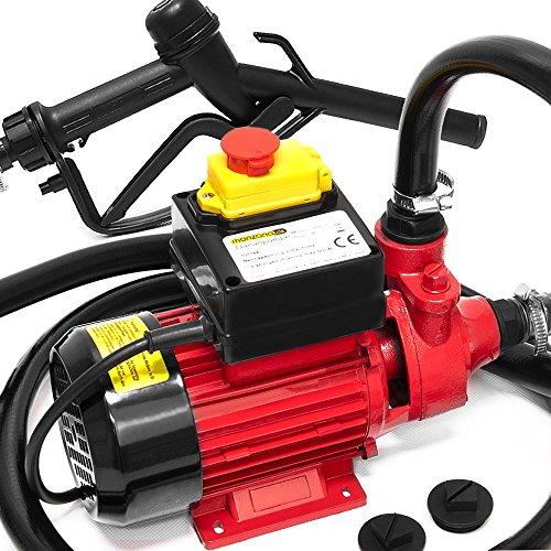 Deuba Pompe Diesel Moteur avec tuyaux et Pistolets - clapet- 40 litres/Min 600W