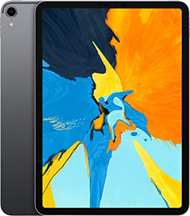 Apple iPad Pro (11-inch, Wi-Fi, 256GB) - Space Gray (Latest Model)