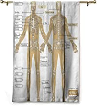 SEMZUXCVO Simple Curtain Human Anatomy Diagram of Human Skeleton System with Titled Main Parts of Body Joints Picture Soft Texture W42 x L72 White Tan