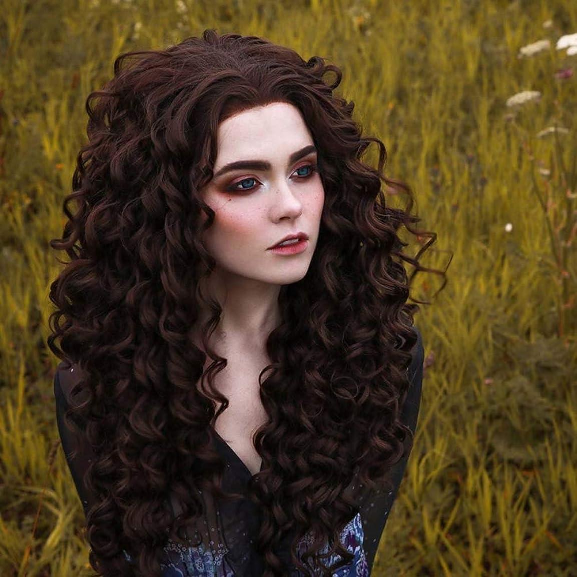 独特の歯痛労働ZXF さんヨーロッパアフリカフロントレース茶色の小さな小さな波化学繊維前髪高温シルクヘッドふわふわ モデルの女性のかつらは染色することができます 美しい (Size : 26