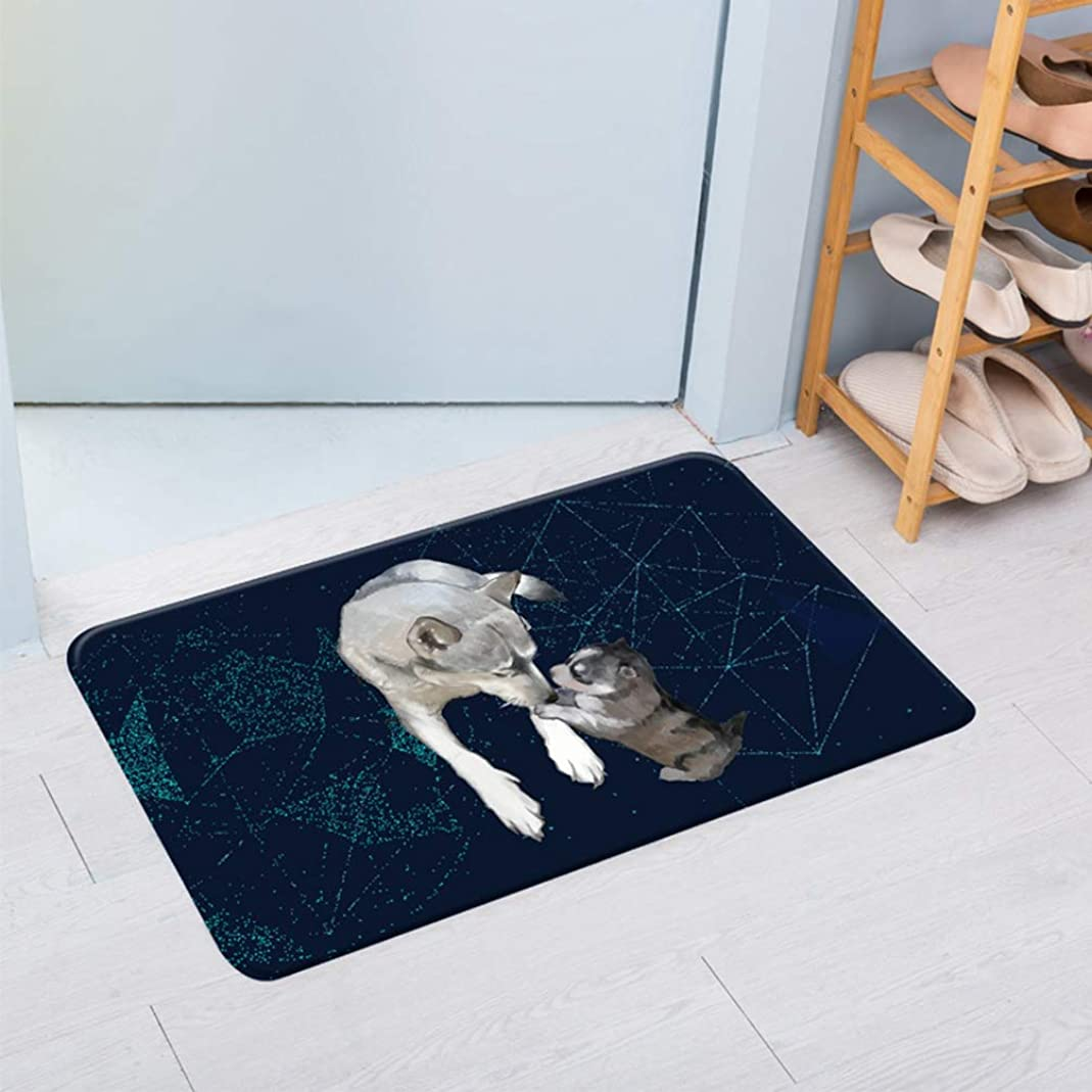ホラー一定ワーム足元マット 玄関マット エントランス 可愛い 猫 犬 ペットパターン 吸水性 家具 屋内 子供 フロアラグ 浴室 足拭き バスルーム ふわふわ 防音 クッション性 通気性ドアマット ブラック 60X90CM