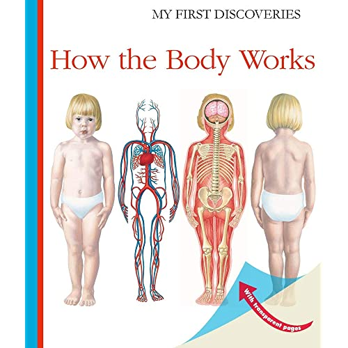 How the Body Works (My First Discoveries)