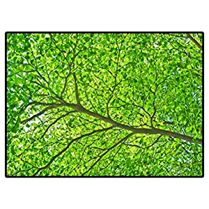 Carpet for Living Room Modern Part of Tree Branch and Leaf Rugs for Christmas and Thanksgiving 6 X 9 Ft