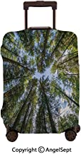 Home Protective Washable Suitcase Cover,Wild Jungle Moss Forest Crown Trees Leaves Nature Photo work Sky Blue and Forest Green,23.6x31.9inches,Travel Elastic Polyster Suitcase Protector