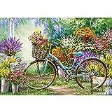 Essinged DIY. Flower Fahrrad DIY 11CT. Kreuzstich Stickerei Kits Handwerk Handwerk Set Gedruckt Leinwand Baumwollfaden Home Decoration (Cross Stitch Fabric CT Number : 11CT, Size : 50x70Silk Threads)