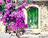 Rustic Green Door Paint by Numbers for Adults DIY Acrylic Painting Kit by MaileKai Creates, 16x20 inches, Wooden Framed Canvas, 3 Professional Brushes