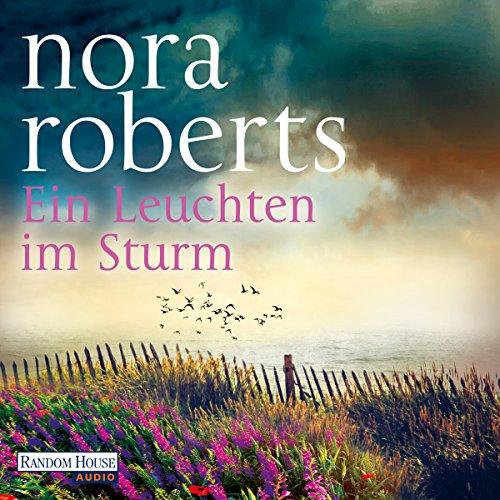 Ein Leuchten im Sturm audiobook cover art