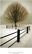 Best david lorenz solitude Reviews