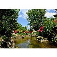 Park Landscape-Puzzle 500/1000/4000/2000/3000/5000/6000ピースギフトタングラムパズル 210220 (Color : Partition, Size : 1000 pieces)