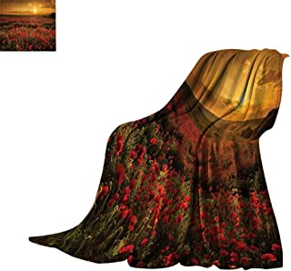 Luckyee Lightweight Blanket Poppy Decor,Poppy Field at Sunset Sun Beams Meadow Cloudscape Wildflower Scene Print Summer Quilt Comforter Bed or Couch 50