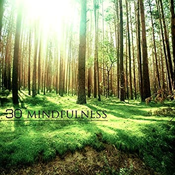 30 Mindfulness - Best Yoga Meditation and Relaxation Music for Breathing Exercises, Relaxation Techniques for Anxiety and Depression