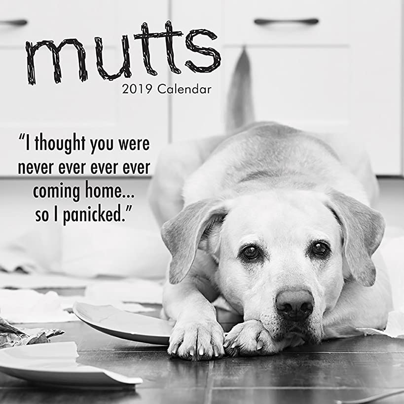2019 Wall Calendar - Mutts and Dogs Calendar, 12 x 12 Inch Monthly View, 16-Month, Funny Quotes Theme, Includes 180 Reminder Stickers