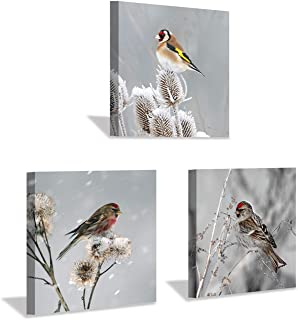Birds Canvas Wall Art Print: Birds on Flower Picture Art Painting for Living Room or Kids Room Decor (12'' x 12'' x 3 Panels)