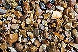 RockinNature - Piedra decorativa para jardín (20 kg)