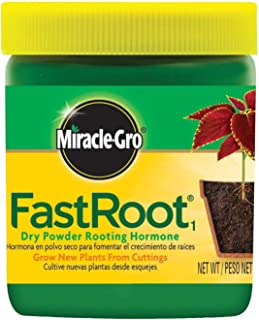FastRoot Dry Powder Rooting Hormone Jar, 1-1/4-Ounce