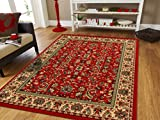 Red Persian Rugs for Living Room 5x8 Red Rugs for Bedroom & Office Rug Reds Green, Cream, Black Area Rugs 5x7 Clearance Under 50