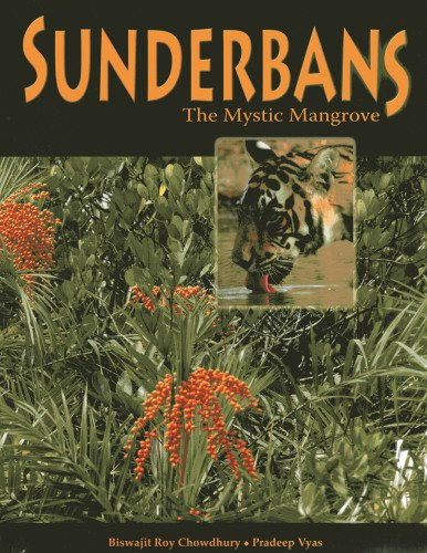 Sunderbans: The Mystic Mangrove