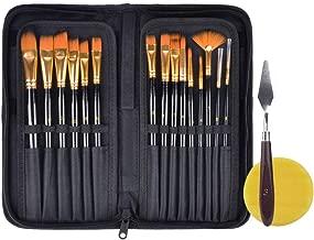 Amazon.com: Haneye Juego de pinceles de pintura, 15 unidades ...