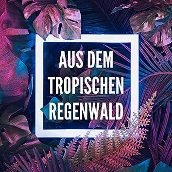 Aus dem tropischen Regenwald: Exotische Naturgeräusche zum Träumen und Meditieren