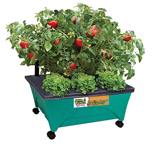 Emsco Group 2360 Little Pickers Raised Bed Children's Improved Aeration – Mobile Unit with Casters – Teaches Kids Self Watering Grow Box, Teal