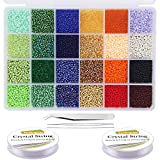 EuTengHao 14400pcs Glass Seed Beads Small Craft Beads for DIY Bracelet Necklaces Crafting Jewelry Making...