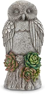 Napco Garden Owl with Succulents Pewter Grey 12 inch Resin Stone Collectible Figurine