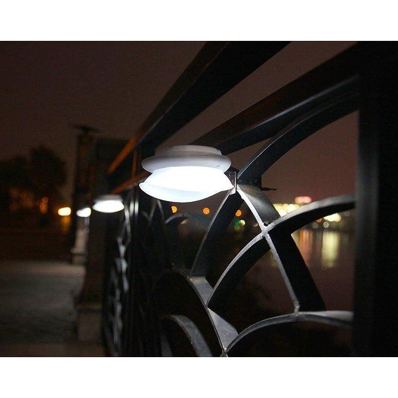 T-ZBDZ Outdoor Garden Small Light Design Automatic Solar Wall Light 192750626576
