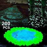 Boomile Glow in the Dark Garden Pebbles for Walkways Outdoor Decor Aquarium Fish Tank Garden Decorative Stones for Path Lawn Yard Walkway in Blue & Green (200 Pack)