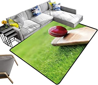 alsohome Large Classical Carpet Cricket Ball Resting on a Cricket bat on Green Grass of Cricket Pitch Chic Pattern Anti-Static 24 x 21 inch