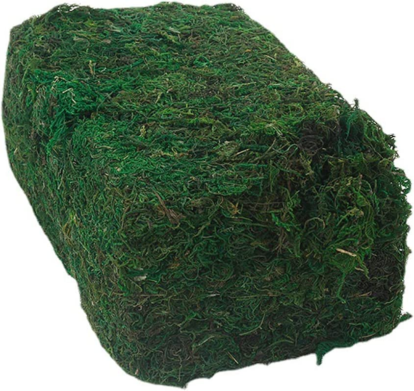 Amosfun Simulated Moss Artificial Imitated Decorative High quality new Plant Now free shipping