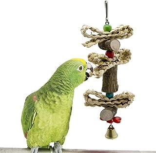 Amazon.es: GUORUIZI - Animales pequeños: Productos para mascotas