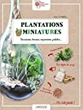 Plantations miniatures: Terrariums, bocaux, suspensions, palettes...