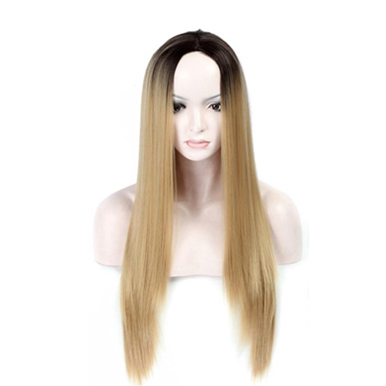 ブレーキ右既婚BOBIDYEE 68センチメートル長さストレートかつらは女性の合成髪のレースのかつらロールプレイングかつらの正方形の形状を変更するために使用できるライトブラウンの髪です。 (色 : ゴールド)