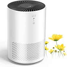 KOXXBASS HEPA Air Purifier Air Cleaner with Fragrance Sponge Eliminate Smoke, Dust, Pollen, Pet Dander for Bedroom, Living Room, Office and Kitchen (Available for California)