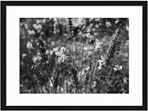 Wood Framed Canvas Artwork Home Decore Wall Art (Black White 20x14 inch) - Flowers Plant Blue Lavender White Glory Candle