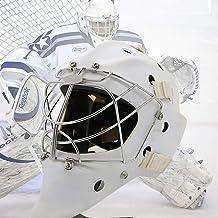 DYM258 Portero de Hockey Máscara Casco Combinado Casco de Hockey sobre Hielo Máscara Facial Equipo de protección Hielo Fuerte Resistencia al Impacto Cabeza a Prueba de explosiones