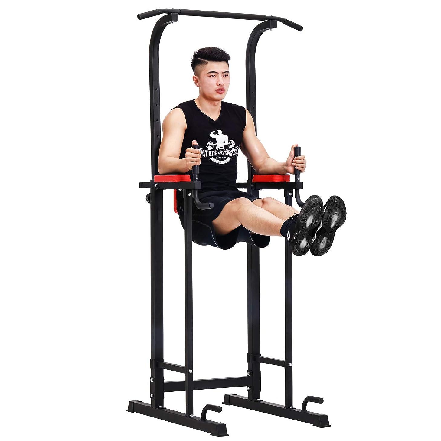 綺麗な祭司試験FITMATE ぶら下がり健康器具 懸垂マシン 懸垂器具 筋力トレーニング 室内
