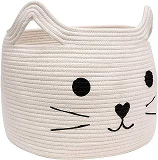 cat in gift box