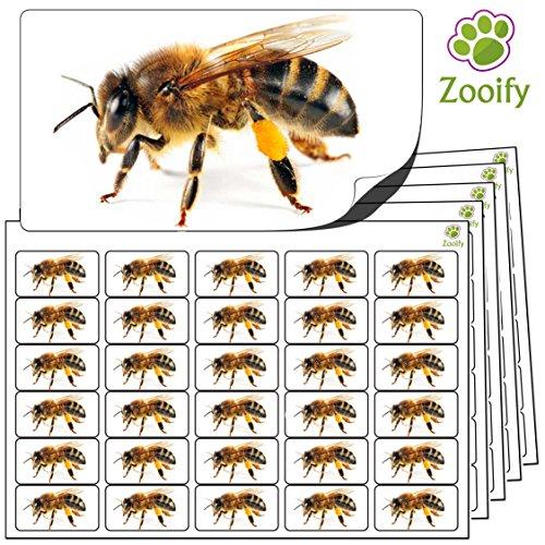480 x Aufkleber - Biene (38 x 21 mm). Hochwertige selbstklebende Etiketten mit Tiermotiv von Zooify.