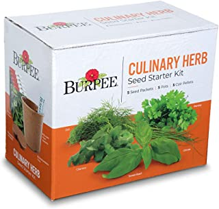 Burpee Culinary Herb Starter Kit | Cilantro, Dill, Parsley, Sweet Basil & Chives | 5 Seed Packets, 5 Pots, 5 Coir Pellets & 5 Plant Markers