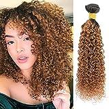 Feelgrace Ombre 1B Brown Brazilian Human Hair Bundles Virgin and Remy Brazilian Hair Bundles 1 Pieces Afro Brazilian Kinky Curly Hair Weave 28 Inch