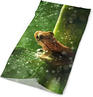 SuBenSM Tree Frog Green Leaf Headband Bandana£¬Outdoor Multifunctional Headwear,Magic Scarf for Men Women