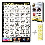 Eazy How To Affiche d'exercices de musculation, tableau de gym à domicile, 51x 73cm - Pour exercice avec barre d'haltérophilie, entraînement d'endurance, tonifier et développer les muscles