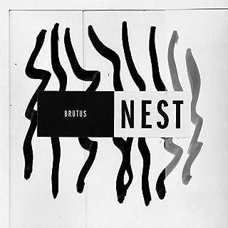 Amazon.es: Nest