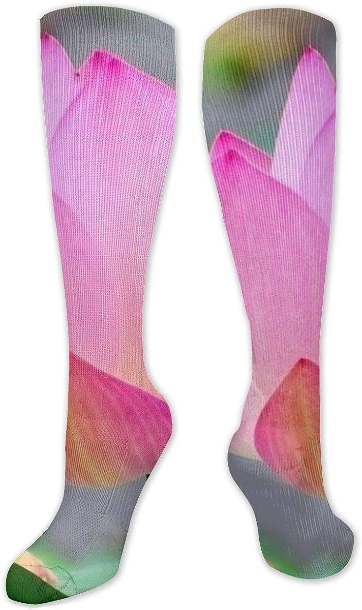 Pond Pink Lotus Knee High Socks Leg Warmer Dresses Long Boot Stockings For Womens Cosplay Daily Wear