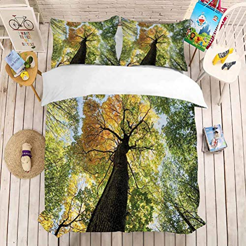 Reversible Quilt Bedding Set,(1 Duvet Cover + 2 Pillow Shams) Bedding 3 Piece Duvet Cover Set Queen California King(104'x98'-20'x36'2) Tree,Ancient Forest in Autumn Green Nature Deciduous Foliage GRO