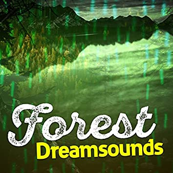 Forest Dreamsounds