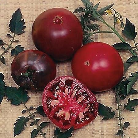 Tomato - 10 Seeds Black Russian Tasmanian Seller